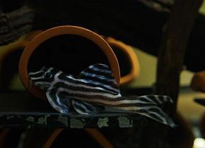 Buena calidad L046 zebra pleco